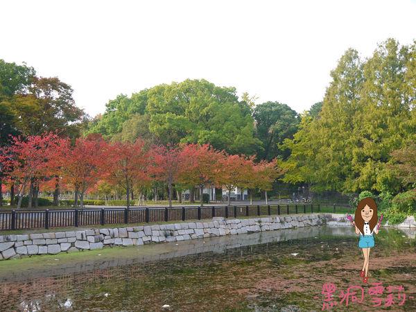 大阪城-19.jpg