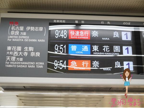 奈良公園-05.jpg