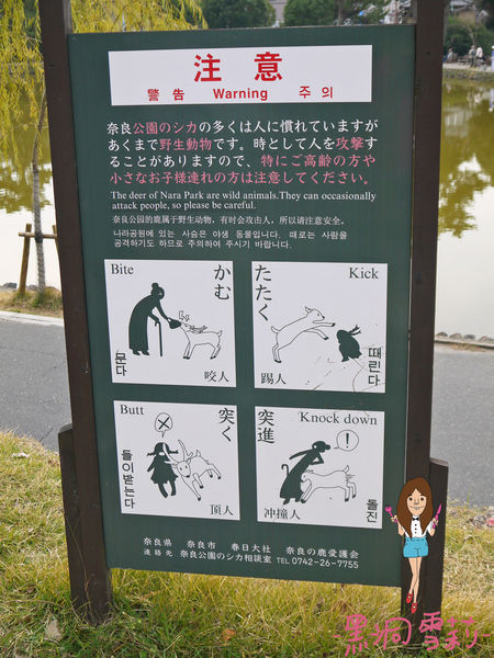 奈良公園-18.jpg