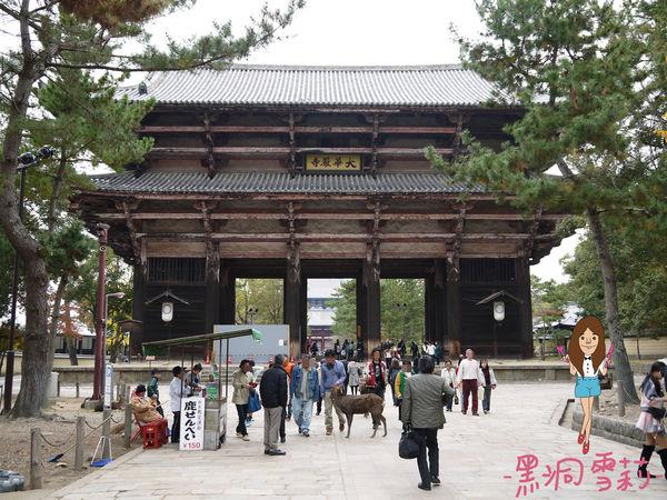 奈良公園-54.jpg