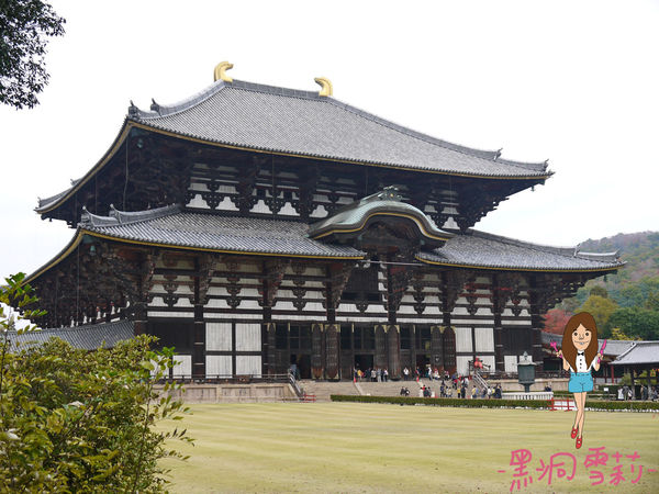 奈良公園-62.jpg