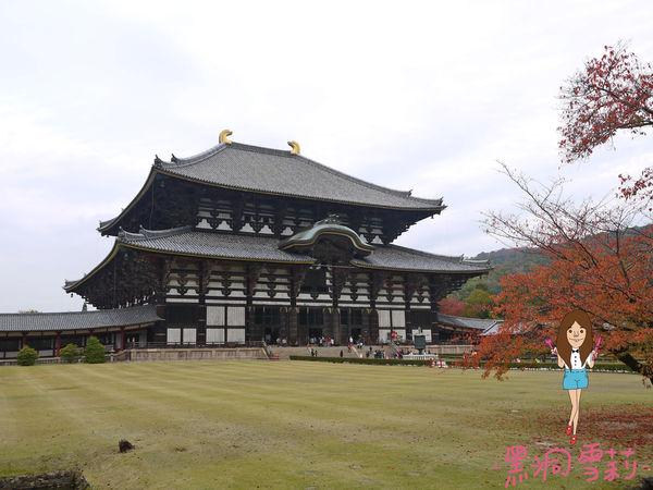奈良公園-63.jpg