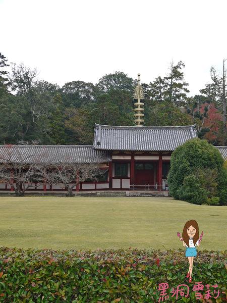 奈良公園-66.jpg