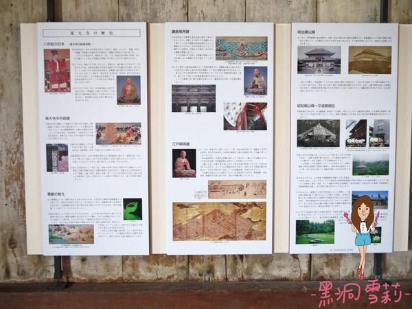 奈良公園-73.jpg