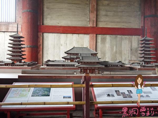 奈良公園-75.jpg