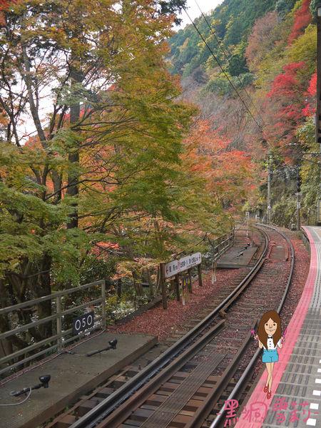 神社-09.jpg