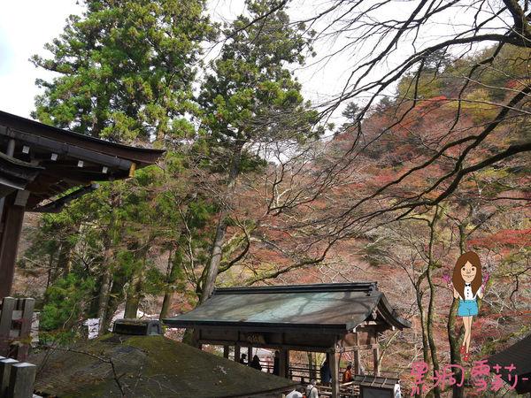 神社-34.jpg