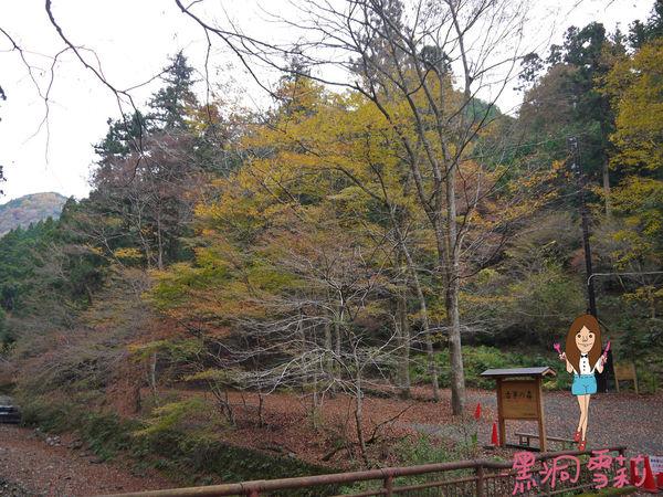神社-39.jpg