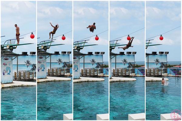 海洋世界-跳板跳水.jpg