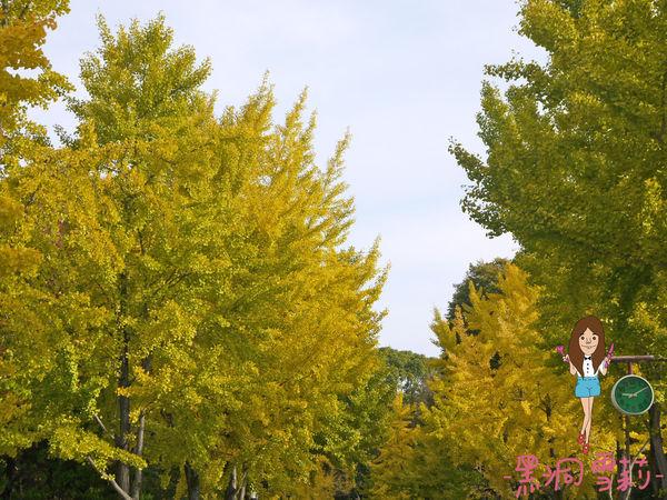 大阪城-13.jpg