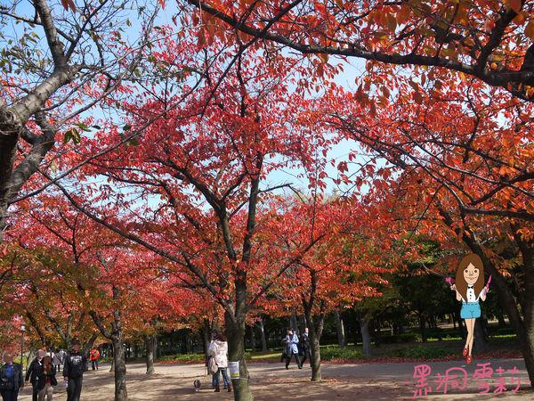 大阪城-53.jpg