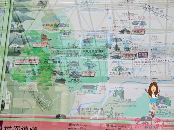 奈良公園-07.jpg