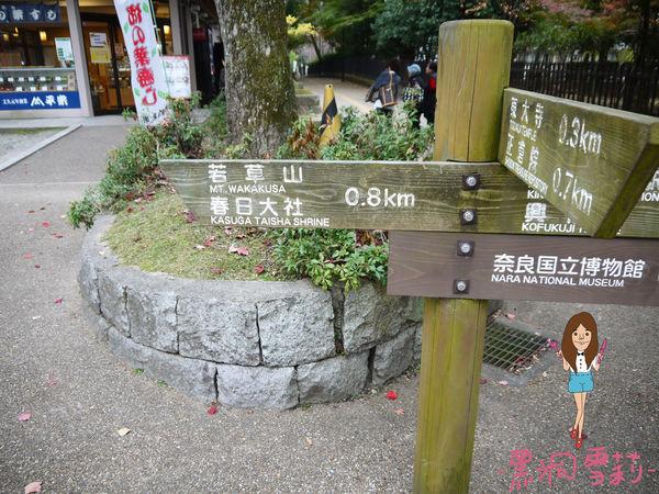 奈良公園-88.jpg